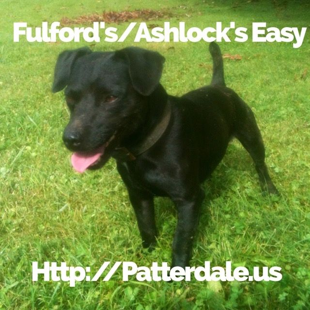 Patterdale Terrier Puppies For Sale Flatwoods Ky 208693