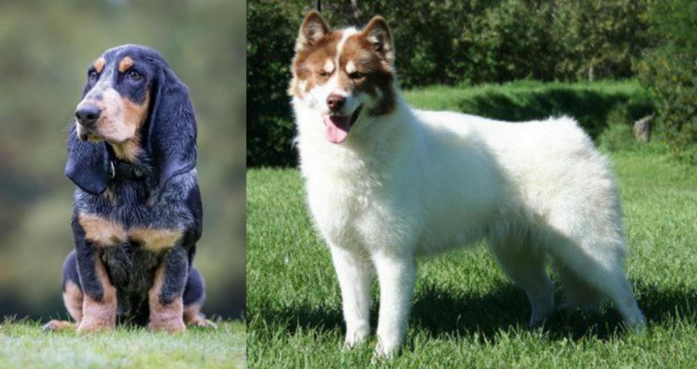 Petit Bleu de Gascogne vs Canadian Eskimo Dog