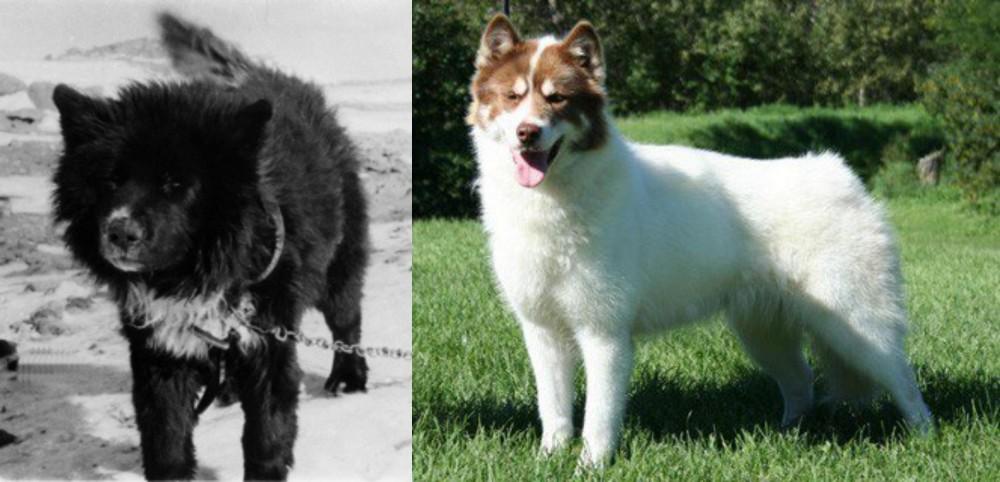 Sakhalin Husky vs Canadian Eskimo Dog