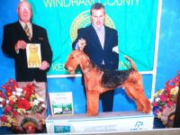 Airedale Terrier Puppies for sale in Milton, DE 19968, USA. price: NA