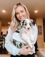 Australian Shepherd Puppies for sale in Texas City Dike, Texas City, TX, USA. price: NA