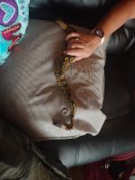 Ball Python Reptiles for sale in Bullhead City, AZ 86442, USA. price: NA