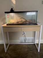 Ball Python Reptiles for sale in Lubbock, TX 79415, USA. price: NA
