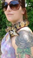 Ball Python Reptiles for sale in Garden City, ID, USA. price: NA