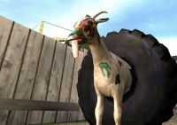 Goat Animals for sale in Goat Dr, St Joe, AR 72675, USA. price: NA