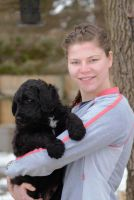 Goldendoodle Puppies for sale in Forest Lake, MN, USA. price: NA