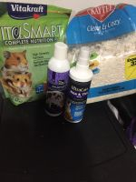 Hamster Rodents for sale in Ocala, FL, USA. price: NA