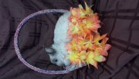 Netherland Dwarf rabbit Rabbits for sale in Atwater, OH 44201, USA. price: NA