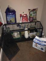 New Zealand rabbit Rabbits for sale in Dacula, GA 30019, USA. price: NA