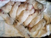 White Shepherd Puppies for sale in Madison Heights, VA 24572, USA. price: NA