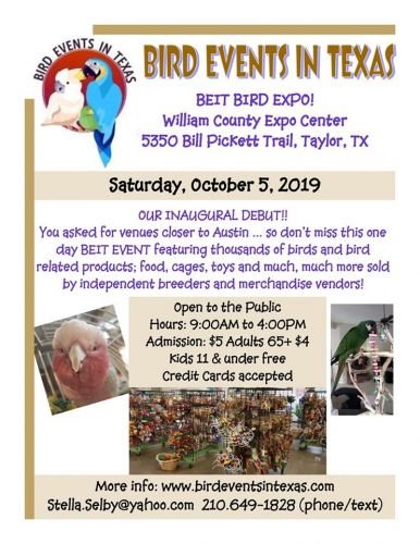 Cockatoo Birds for sale in Taylor, TX 76574, USA. price -USD