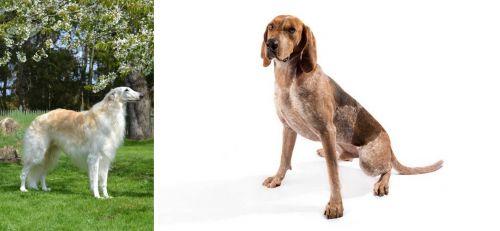 Russian Hound vs Coonhound